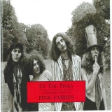 Up The Pinks: An Introduction To Pink Fairies