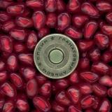 Гранатовый альбом [Pomegranate Album]