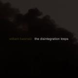 The Disintegration Loops