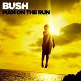 Bush : Best Ever Albums