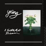 A Youthful Dream